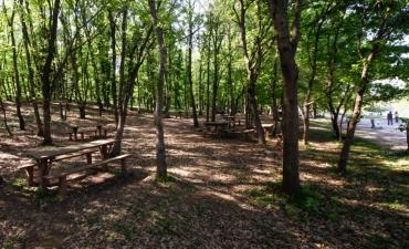 Piknik Alanları